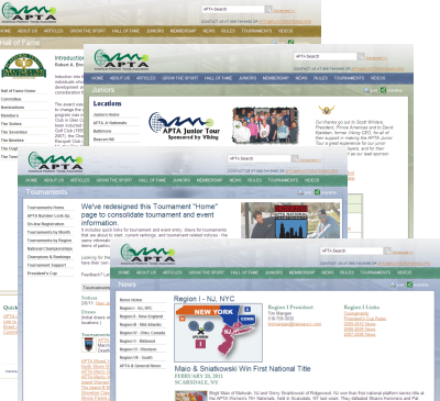 APTA Web Site Redesign