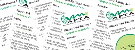 Player Self-Assessment